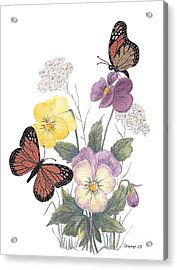 Little Heartsease Acrylic Print by Stanza Widen
