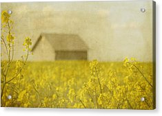 Little House On The Prairie Acrylic Print by Rebecca Cozart