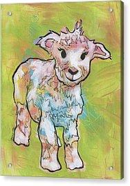 Little Lamb Acrylic Print