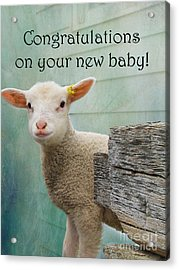 Little Lamb New Baby Greeting Acrylic Print