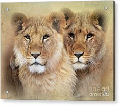 Acrylic Print featuring the digital art Little Lions by Trudi Simmonds
