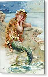 Little Mermaid Acrylic Print by E S Hardy