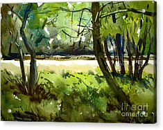 Little Mississinewa Running Wild Matted Glassed Framed Acrylic Print by Charlie Spear