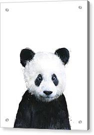 Little Panda Acrylic Print