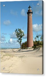 Little Point Sable Light Acrylic Print