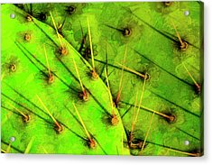Acrylic Print featuring the photograph Prickly Pear by Paul Wear