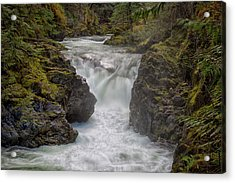 Acrylic Print featuring the photograph Little Qualicum Lower Falls by Randy Hall