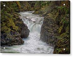 Little Qualicum Lower Falls Acrylic Print by Randy Hall