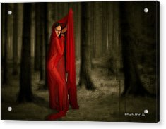 Little Red In Woods Acrylic Print by Thomas Churchwell