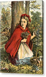 Little Red Riding Hood Gathering Flowers Acrylic Print by English School
