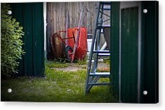 Acrylic Print featuring the photograph Little Red Wagon by Tim Nichols