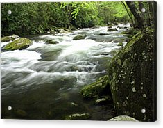 Little River 3 Acrylic Print by Marty Koch