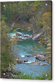 Little River Canyon Acrylic Print by Judy  Waller