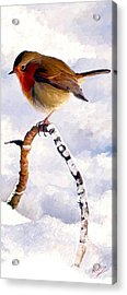 Acrylic Print featuring the painting Little Robin Redbreast by James Shepherd