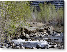 Little Rock Acrylic Print by Ivete Basso Photography
