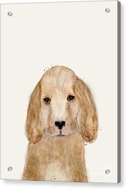 Acrylic Print featuring the painting Little Spaniel by Bri B