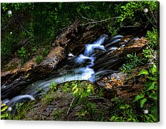 Acrylic Print featuring the photograph Little Stream by Gary Smith