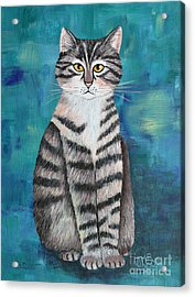 Little Tiger Acrylic Print