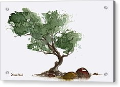 Little Tree 1 Acrylic Print