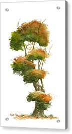 Little Tree 23 Acrylic Print