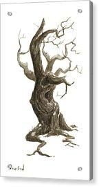 Little Tree 78 Acrylic Print by Sean Seal