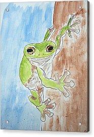 Little Tree Frog Acrylic Print by Jennifer Coleman