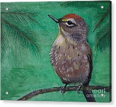 Acrylic Print featuring the painting Little Warbler by Leslie Allen