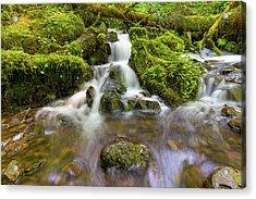 Little Waterfalls Along Wahkeena Creek Acrylic Print