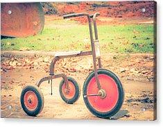 Little Wheels Acrylic Print by Toni Hopper