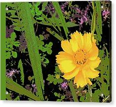 Little Yellow One Acrylic Print