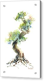 Little Zen Tree 1692 Acrylic Print by Sean Seal