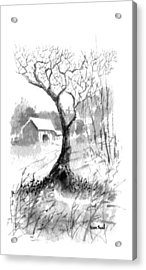 Little Zen Tree 1832 Acrylic Print by Sean Seal