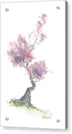 Little Zen Tree 1981 Acrylic Print