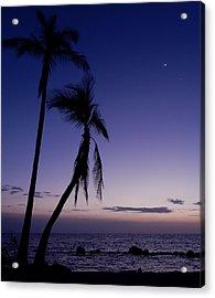 Live Aloha Acrylic Print