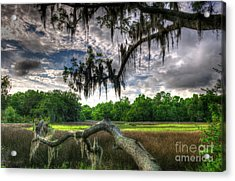 Live Oak Marsh View Acrylic Print