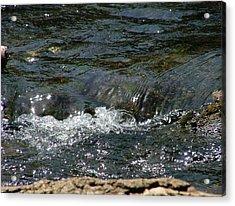 Live Water Acrylic Print
