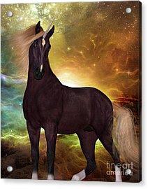 Liver Chestnut Unicorn Acrylic Print