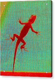 Lizard On The Screen Acrylic Print