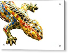 Lizard Souvenir By Antony Gaudi Acrylic Print by Soultana Koleska