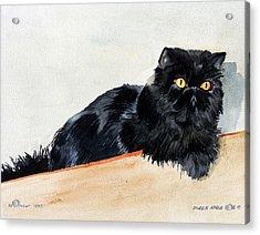 Lizzy Acrylic Print by Eileen Hale