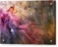 Ll Ori And The Orion Nebula Acrylic Print by Adam Romanowicz