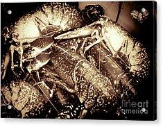 Lobster Catcher Acrylic Print by Baggieoldboy