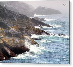 Lobster Cove Acrylic Print