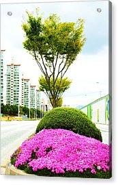 Local Greenery 1 Acrylic Print by Michael C Crane