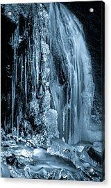 Locked In Ice Acrylic Print