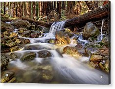Log Falls On Limekiln Creek Acrylic Print