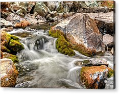 Logan Creek, Montana 2 Acrylic Print