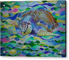 Loggerhead Turtle Acrylic Print by Tracey Harrington-Simpson