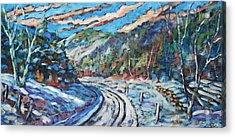Loggers Road  Acrylic Print by Richard T Pranke