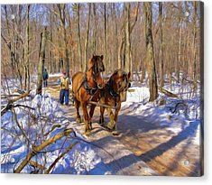Logging Horses 1 Acrylic Print by Trey Foerster